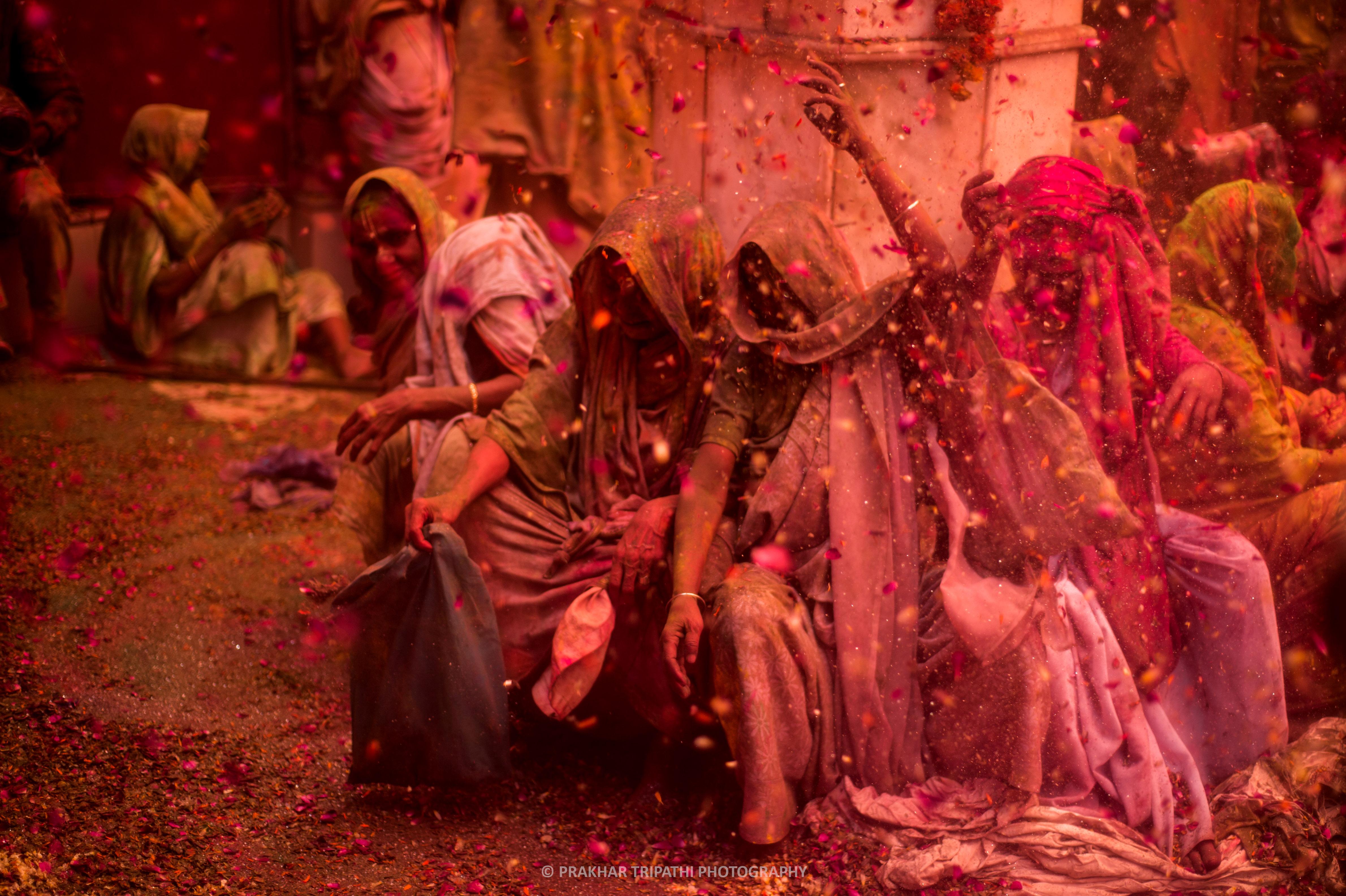 Prakhar Tripathi, Widows Holi