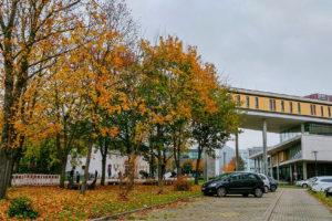 library, otto von guericke universitat magdeburg
