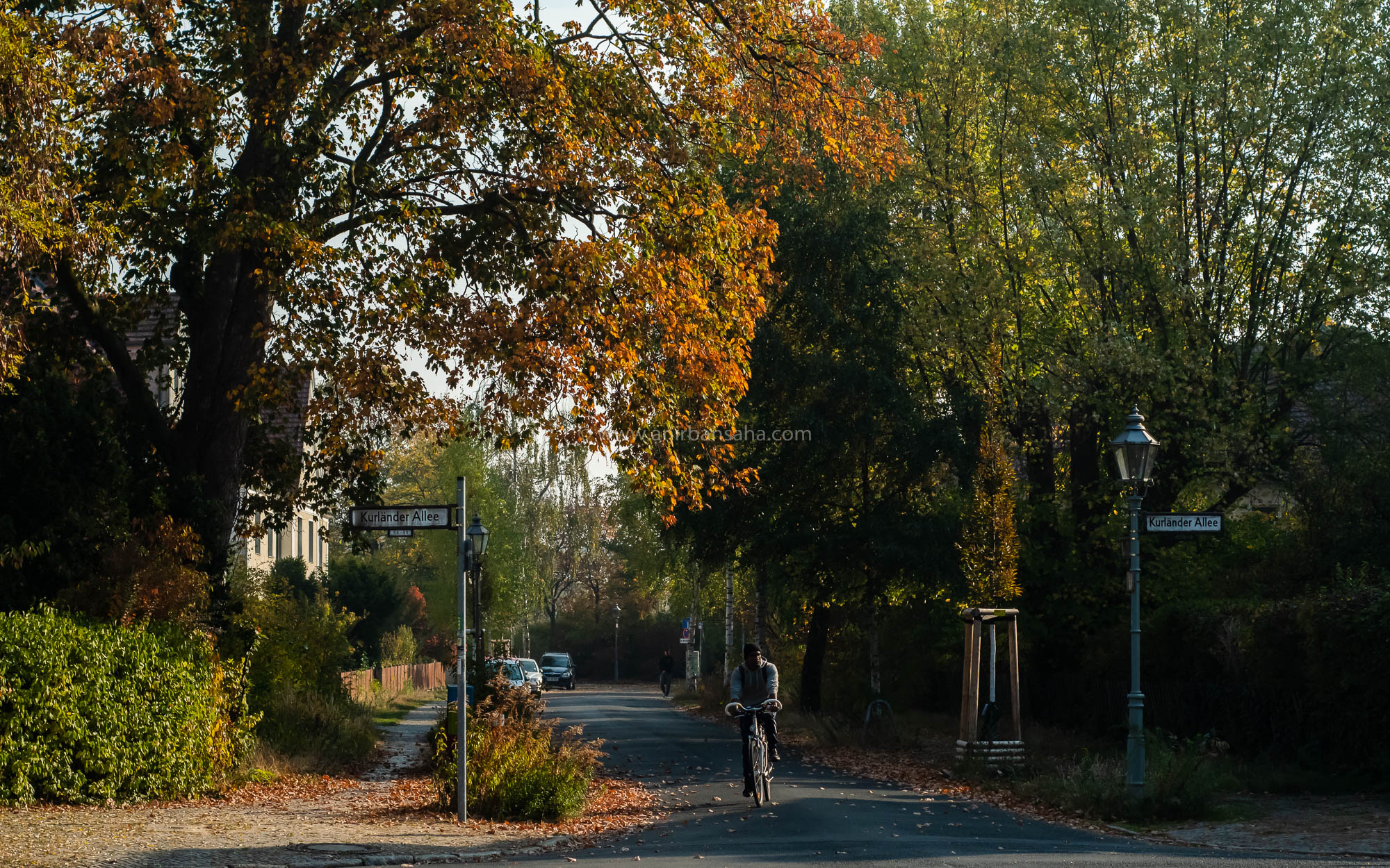autumn in Magdeburg