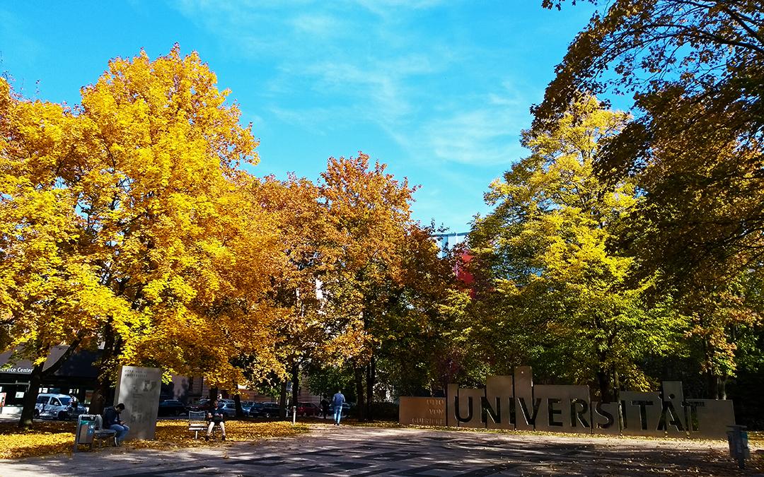 ovgu, otto-von-guericke university, autumn in magdeburg