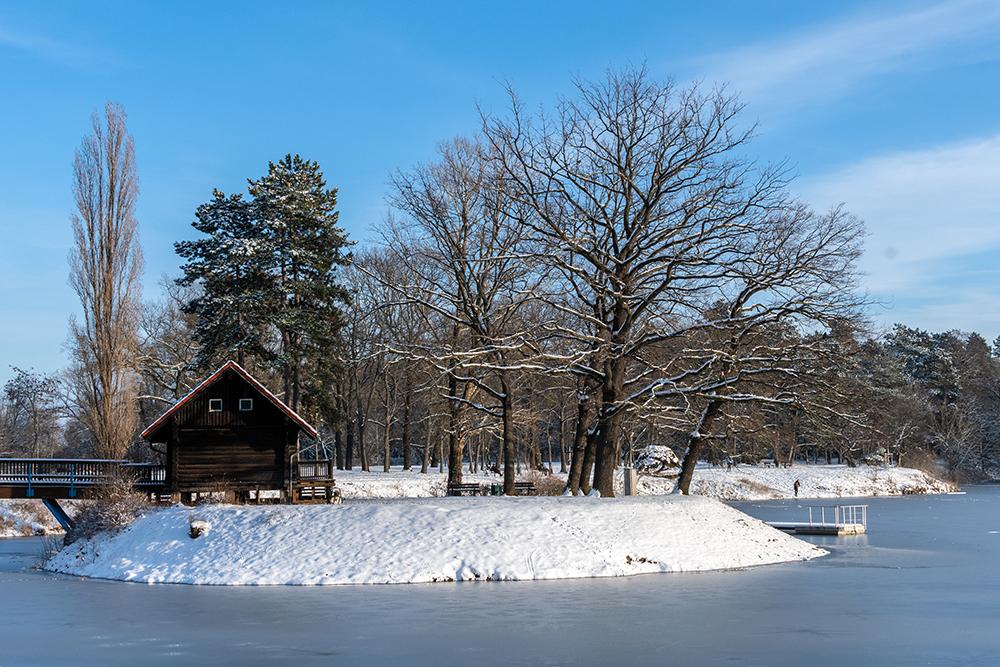 snow in magdeburg stadtpark